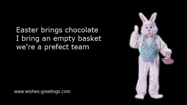 funny easter bunny pictures